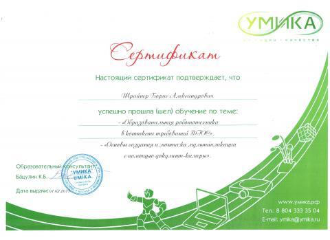 Сертификат об успешном прохождения 2-х мастер-классов от Умика (01.02.2017)